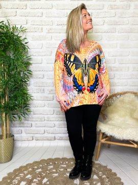 Betty papillon pull tunique grande taille profil