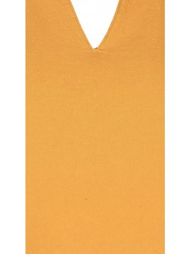 Johanna, robe grande taille, marque Zizzi jaune zoom